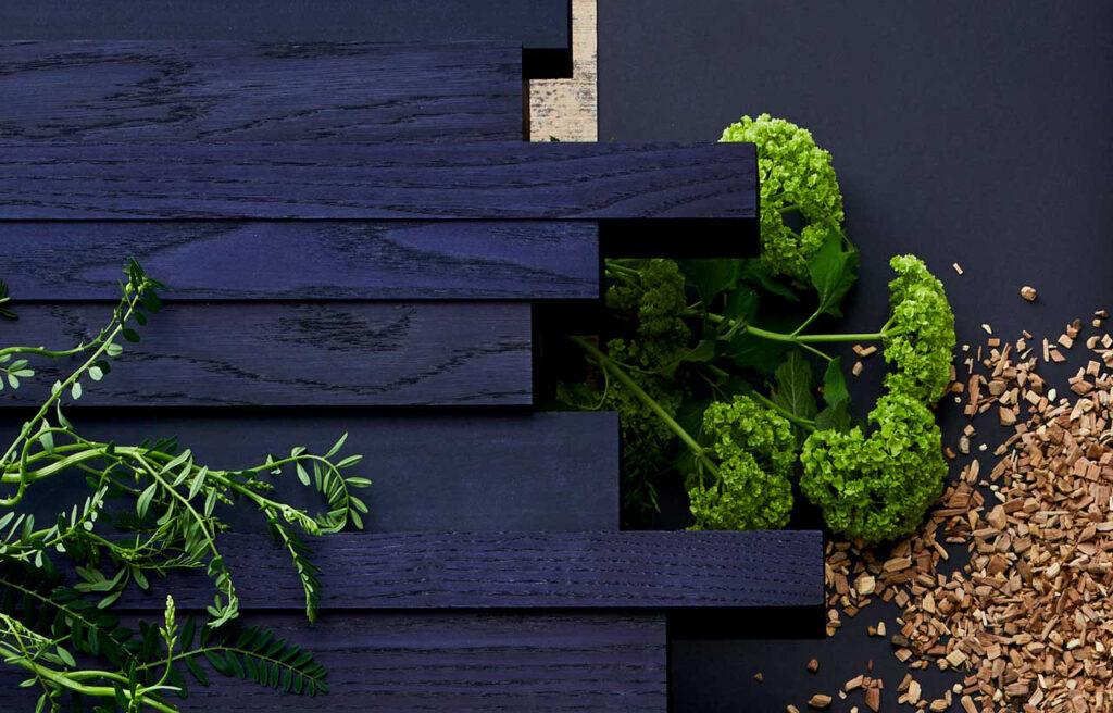 CMF Design Release in Autumn